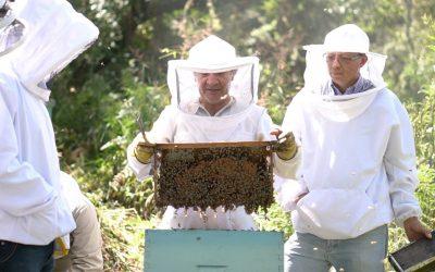 UNL organizó el evento 'Un día como apicultor'